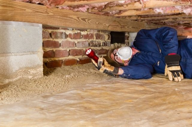 a termite inspection conducted by an exterminator
